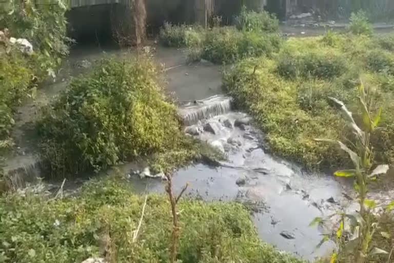 यमुना नदी में डाला जा रहा सीवर का गंदा पानी