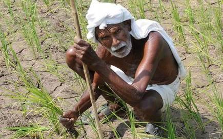 किसान आंदोलन को लेकर सोशल मीडिया पर की गयी पोस्ट से हुआ हंगामा