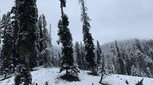 ऊंचाई वाले इलाकों में बर्फबारी, मैदानी इलाकों में बारिश से बढ़ी ठंड