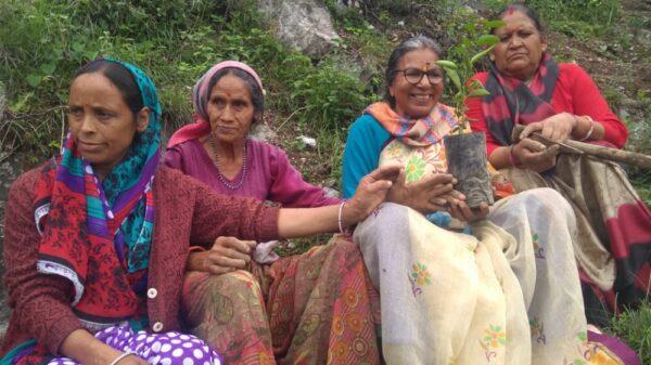 ग्रामीणों ने पौध रोपित करने के साथ ही लिया जंगल बचाने का संकल्प